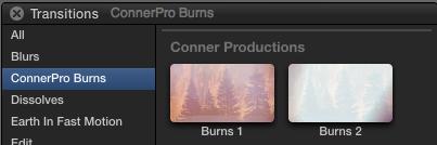 Burns-Transitions