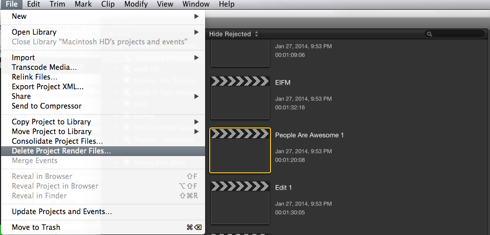 delete-project-render-files